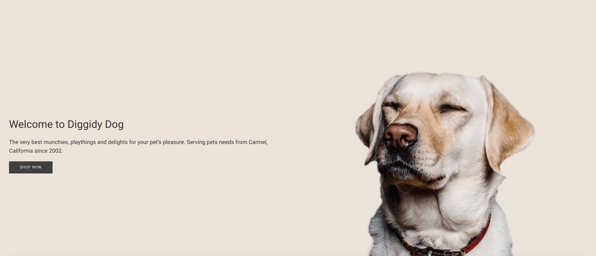 10 Shopify Dog Stores | Take a Part of 21 Billion Dollars